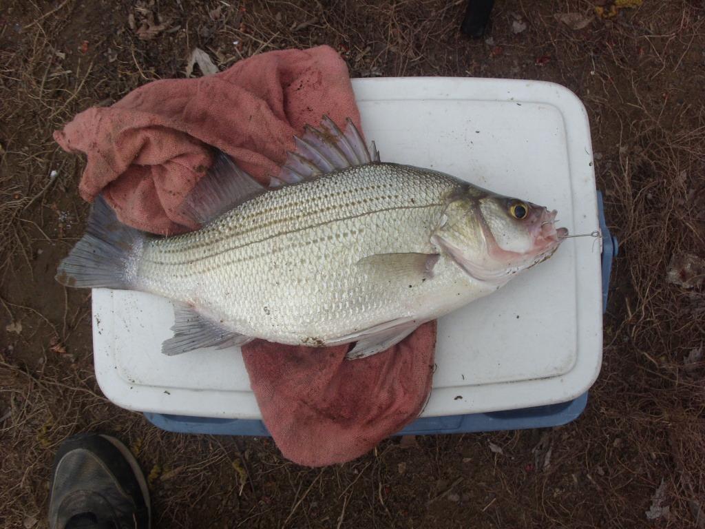 First fishin' trip-998.jpg