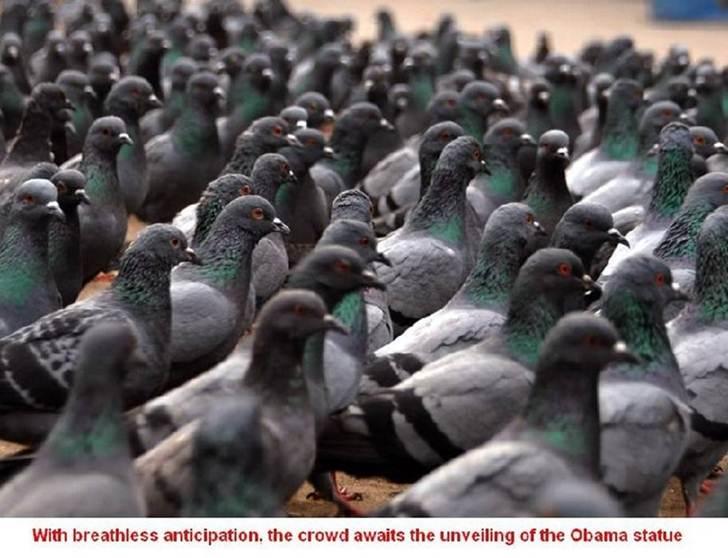Obama Statue Unveiling-barkycare-unveiled.jpg