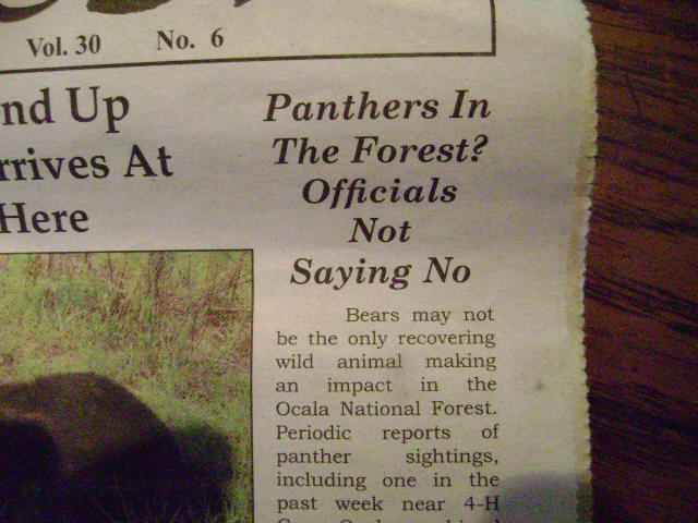 Kentucky Considering A Bear Hunting Season-bears-002.jpg