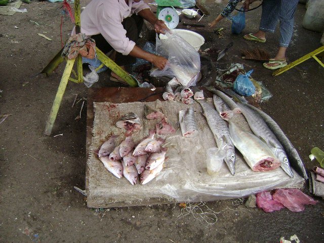 Extreme Living-cambodia-281.jpg