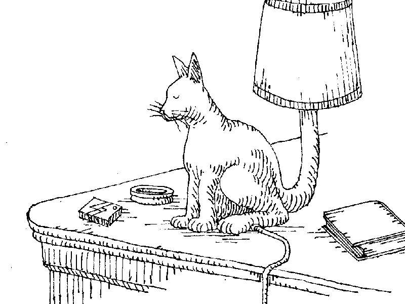 Uses for a dead cat-cat12.jpg