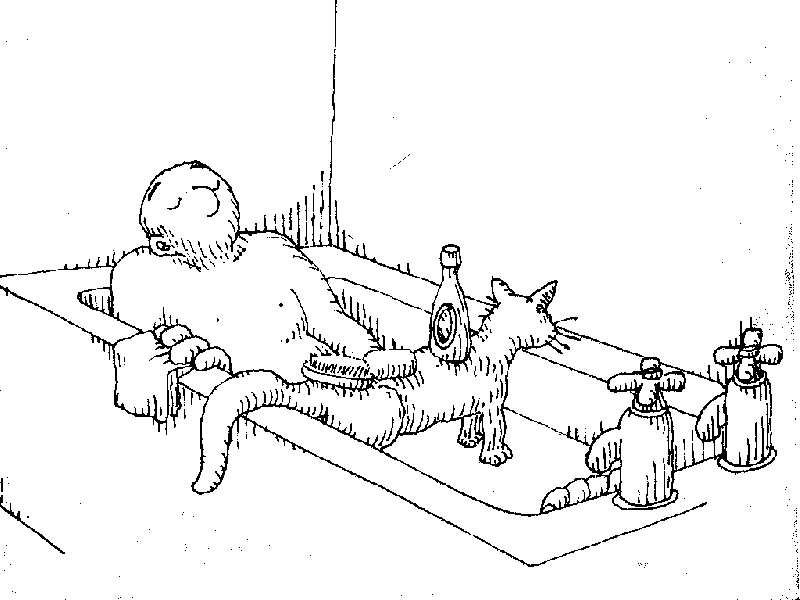 Uses for a dead cat-cat14.jpg
