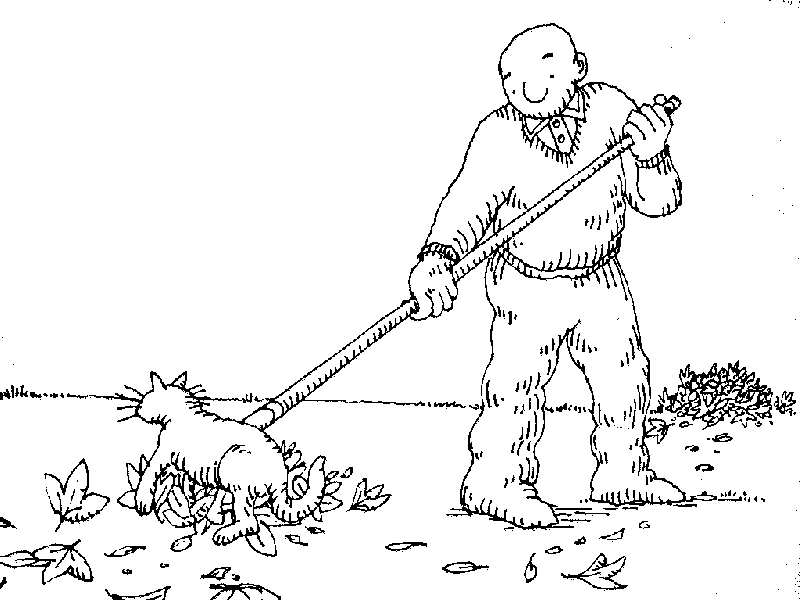 Uses for a dead cat-cat16.jpg