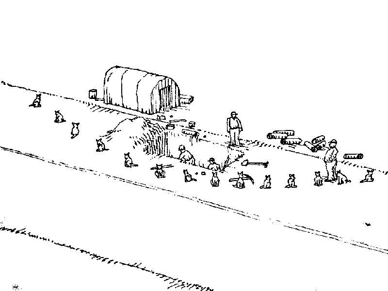 Uses for a dead cat-cat18.jpg