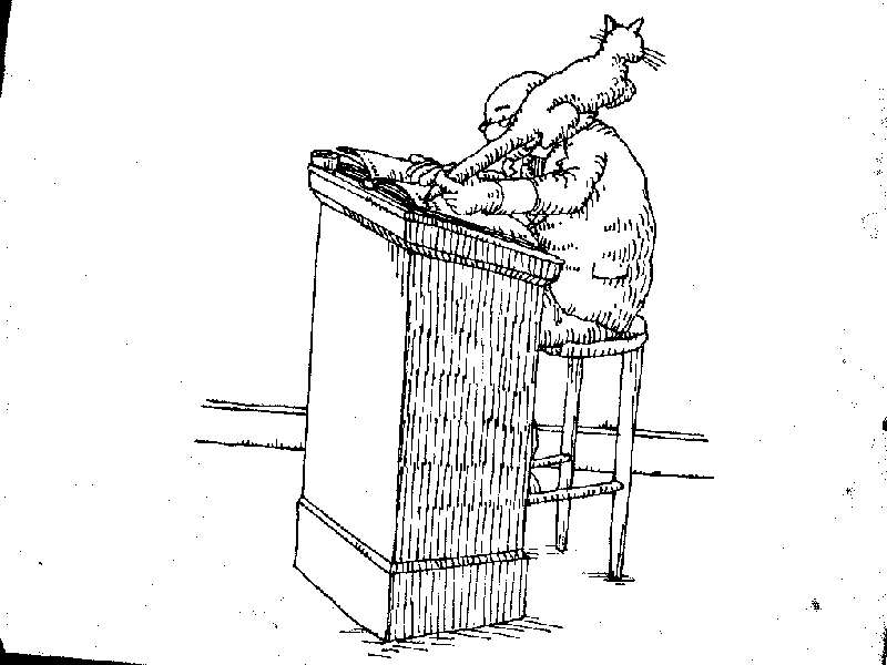 Uses for a dead cat-cat20.jpg