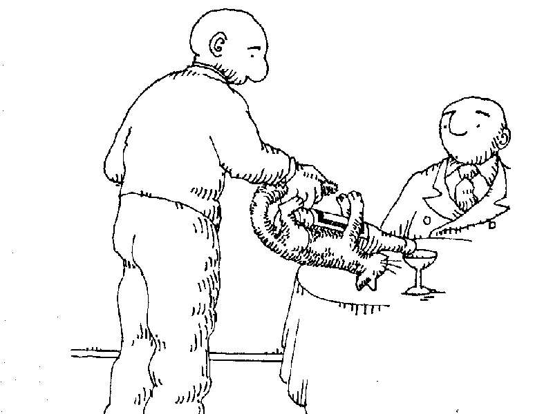 Uses for a dead cat-cat21.jpg