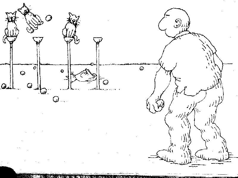 Uses for a dead cat-cat28.jpg