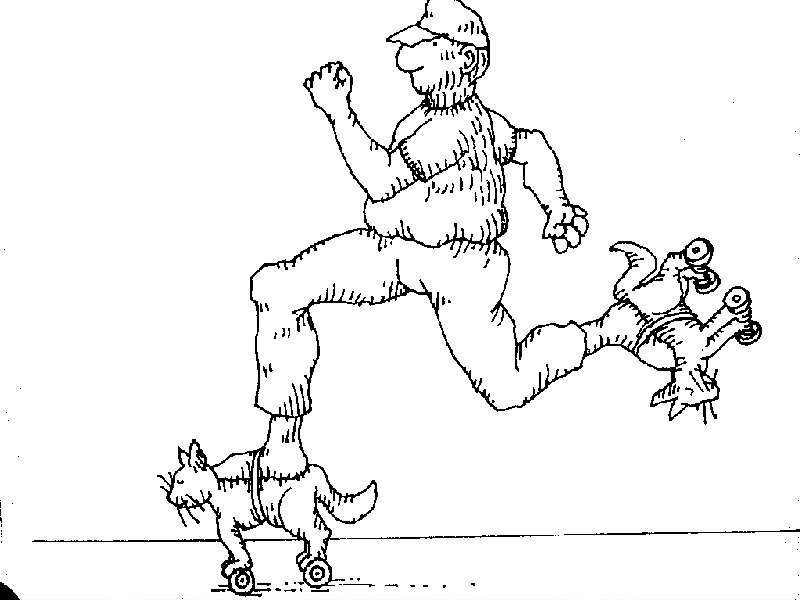 Uses for a dead cat-cat29.jpg