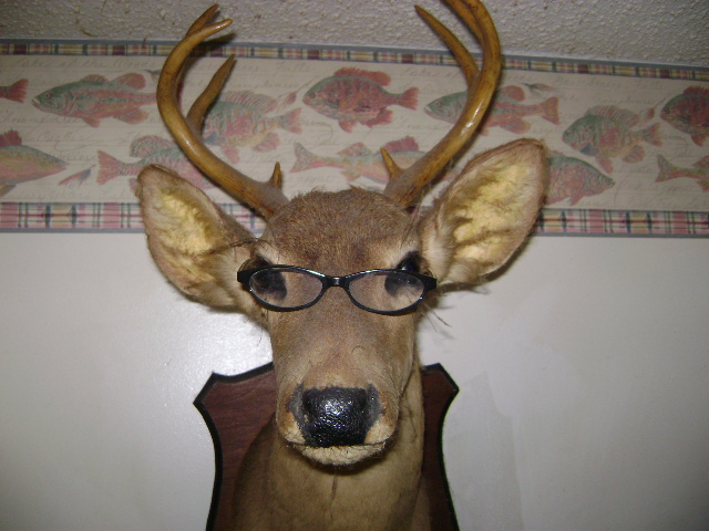 SHOW US YOUR BEST RACK CONTEST-deer-001.jpg