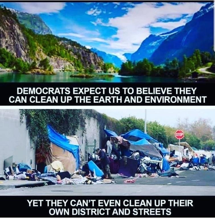 Socialism for Dummies-democrats.jpg