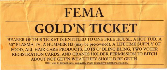 FEMA Ticket-fema.jpg