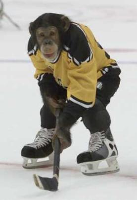 a special post for Cheezy-hockey-monkey.jpg