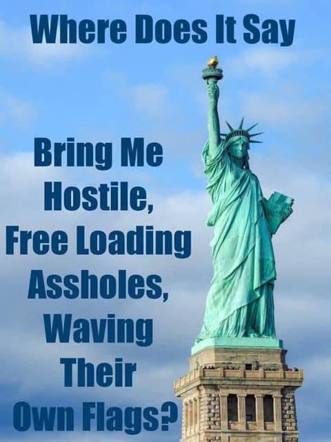 MAGA-liberty.jpg