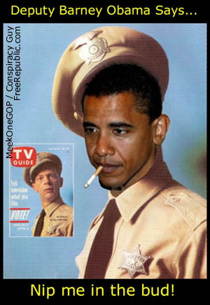 the police have come for your guns!-obamabarneyfife.jpg