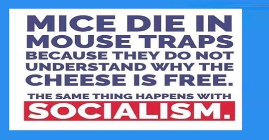 Socialism for Dummies-p53.jpg
