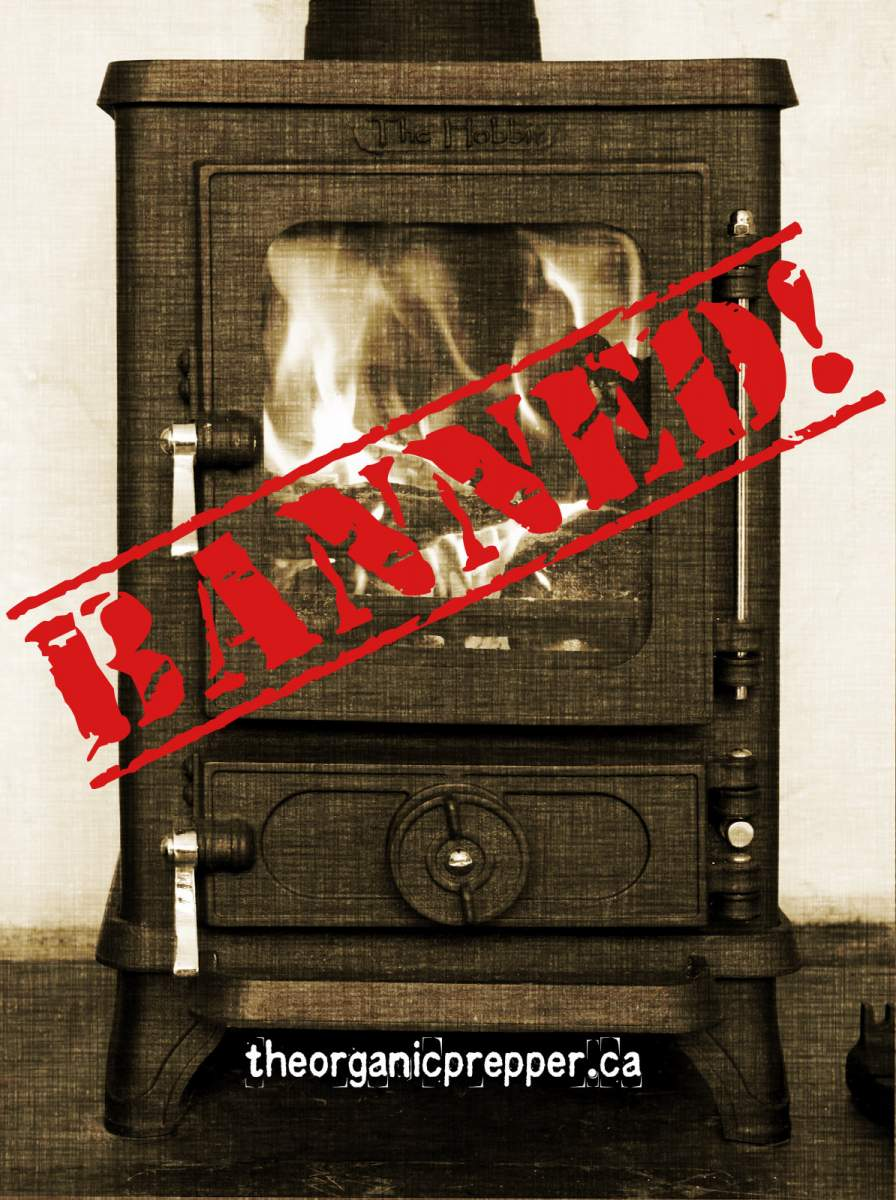 The EPA Takes an Ax to Self-Sufficiency: Most Woodburning Stoves Will Soon Be Illega-stove.jpg