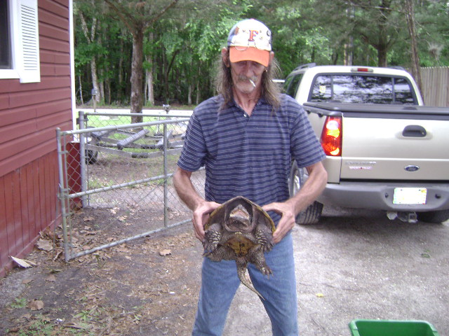 FLORIDA REPTILES WILL HURT YOU.-turtle-003.jpg